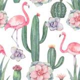 Картина вектора акварели безшовная розового фламинго, кактусов и суккулентных заводов изолированных на белой предпосылке иллюстрация штока