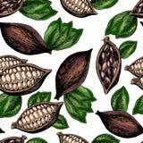 Картина вектора безшовная бобов кака и листьев Искусство нарисованное рукой покрашенное выгравированное Стоковая Фотография