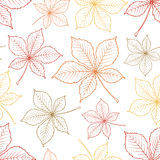 Картина вектора безшовная листьев каштана Стоковое фото RF