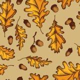 Картина вектора безшовная листьев и жолудей дуба Нарисованная рукой иллюстрация вектора бесплатная иллюстрация