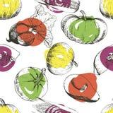 Картина вектора безшовная овощей Тыква, мозоль, бурак, авокадо Иллюстрация нарисованная рукой выгравированная винтажная Стоковая Фотография RF