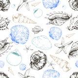 Картина вектора безшовная покрашенных seashells Иллюстрация нарисованная рукой выгравированная винтажная Стоковое Изображение