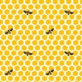 Картина вектора безшовная сотов и пчел Стоковое Изображение RF