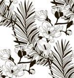 Картина вектора безшовная с вычерченными цветками и листьями иллюстрация штока