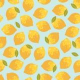 Картина вектора безшовная с лимонами лета Стоковая Фотография