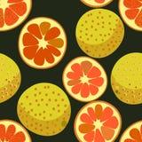 Картина вектора безшовная с красными грейпфрутами иллюстрация штока