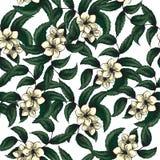 Картина вектора безшовная с клубникой цветков бесплатная иллюстрация