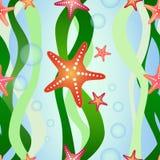 Картина вектора безшовная с морской водорослью и морскими звёздами Стоковые Изображения