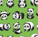 Картина вектора безшовная с пандами шаржа Стоковая Фотография RF