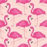 Картина вектора безшовная с фламинго Стоковое Изображение