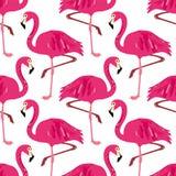 Картина вектора безшовная с фламинго Стоковое Изображение RF