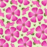 Картина вектора безшовная с цветками и бутонами Стоковое Изображение RF