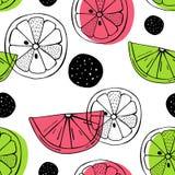 Картина вектора безшовная с цитрусовыми фруктами Скандинавские поводы Рисовать вручную Милая печать Стоковые Изображения RF