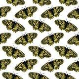 Картина вектора безшовная с яркими бабочками Нарисованный рукой дизайн текстуры Стоковые Изображения