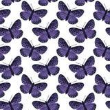 Картина вектора безшовная с яркими бабочками Нарисованный рукой дизайн текстуры Стоковая Фотография