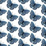 Картина вектора безшовная с яркими бабочками Нарисованный рукой дизайн текстуры Стоковые Изображения RF