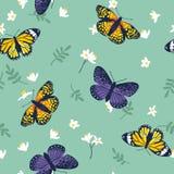 Картина вектора безшовная с яркими бабочками Нарисованный рукой дизайн текстуры Стоковые Фотографии RF