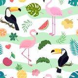 Картина вектора безшовная с toucan и фламинго Стоковое Изображение RF
