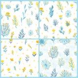 Картина вектора безшовная установила с заводами поля в желтых и голубых цветах на белой предпосылке Стоковые Фотографии RF