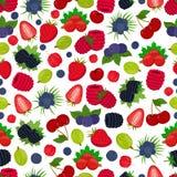 Картина вектора безшовная ягод Клубника, черная смородина, bluberry, крыжовник, вишня, acerola Стоковые Фотографии RF