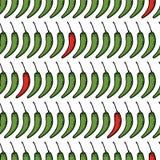Картина вектора безшовная chili перца эскиза Стоковая Фотография RF