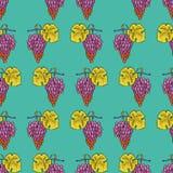 Картина вектора виноградины безшовной покрашенная каллиграфией стоковые фото