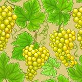 Картина вектора виноградин бесплатная иллюстрация