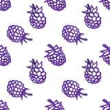 Картина вектора винтажной ежевики акварели безшовная Стоковая Фотография RF