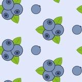 Картина вектора голубики безшовная Стоковое Изображение