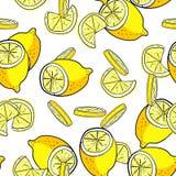 Картина вектора лимона безшовная Стоковые Изображения RF