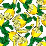 Картина вектора лимона и мяты безшовная Стоковая Фотография RF