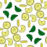 Картина вектора лимона и мяты безшовная Стоковое Фото