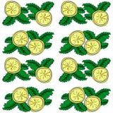 Картина вектора лимона и мяты безшовная Стоковое фото RF