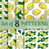 Картина вектора лимона и мяты безшовная Стоковые Изображения