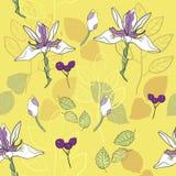 картина вектора картины ботанической печати безшовная в лимонножелтом и лаванде иллюстрация вектора