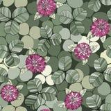 Картина вектора клевера безшовная с листьями и цветками Стоковые Изображения RF