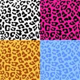 Картина вектора кожи леопарда безшовная повторенная Комплект 4 differen иллюстрация штока