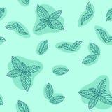 Картина вектора листьев мяты нарисованная рукой безшовная Пипермент, пряные травы, текстура кухни, Doodle варя ингридиент для диз бесплатная иллюстрация