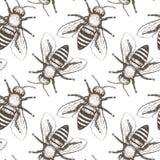 Картина вектора пчел безшовная Стоковое Изображение