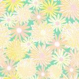 Картина вектора цветков весны безшовная Цветки маргаритки и астры пинка желтые белой на зеленой предпосылке современно бесплатная иллюстрация