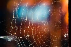 Картина вектора Jrange для helloween Стоковое Изображение RF