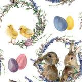 Картина венка пасхи акварели Вручите покрашенного кролика, цыпленка с лавандой, вербой, тюльпаном, яичками цвета, бабочкой и Стоковые Фотографии RF