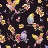 Картина весны акварели безшовная, винтажная флористическая иллюстрация иллюстрация штока