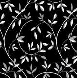 Картина ветви вала Стоковая Фотография