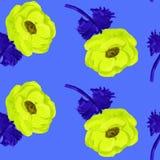 Картина ветреницы безшовная, цветок акварели, покрашенный вручную, изображение вектора Стоковое Изображение RF