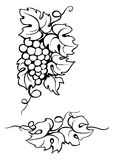 Картина виноградины вина бесплатная иллюстрация