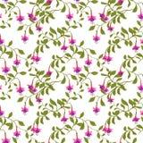 Картина винтажных обоев безшовная с цветком fuschia Стоковое фото RF
