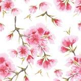 Картина вишневого цвета акварели безшовная иллюстрация штока