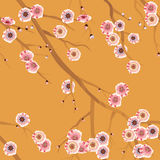 картина вишни цветения безшовная Стоковая Фотография RF