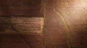 Картина воздушного фотографирования на сезоне сбора конспекта фермы мозоли поля земли Стоковые Фотографии RF